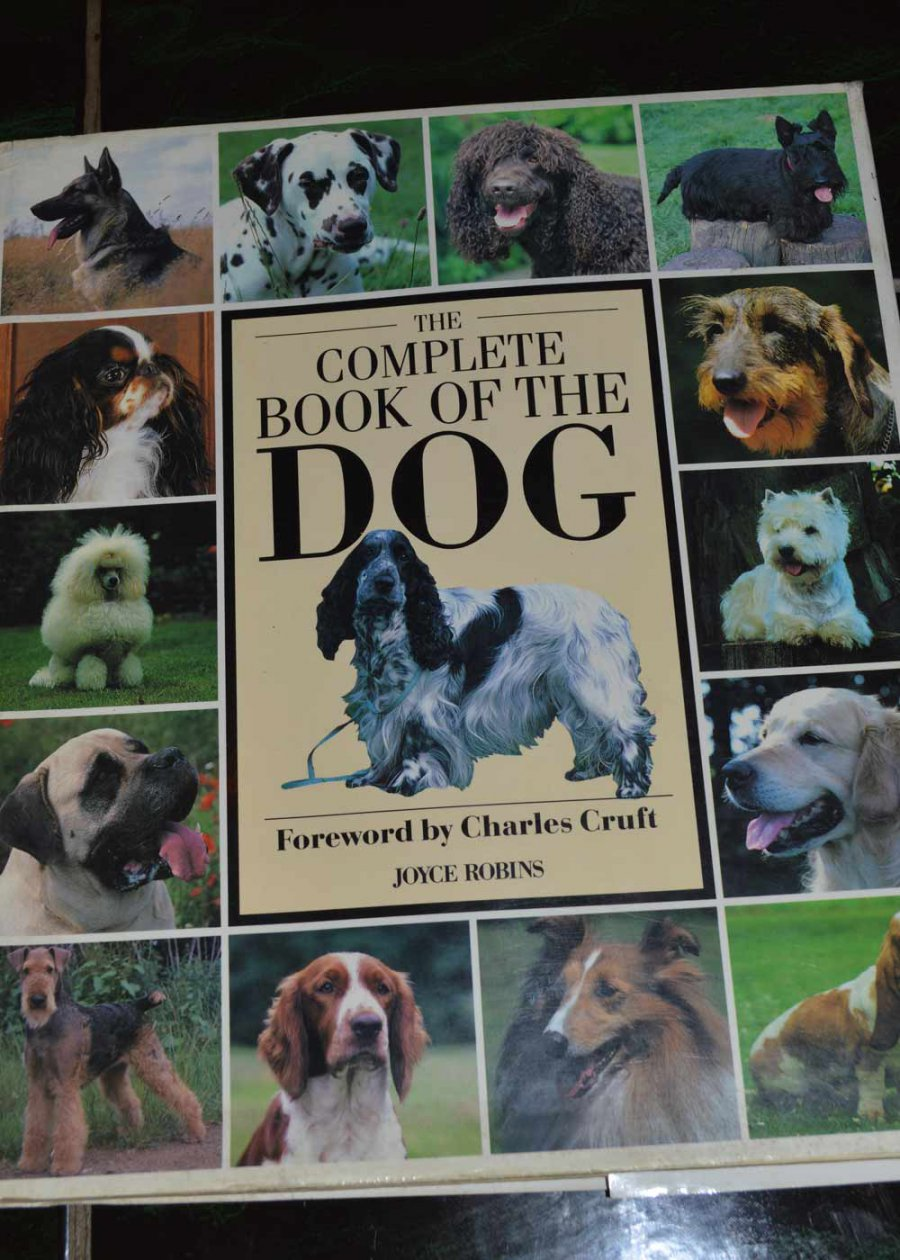 the complete dog book pdf