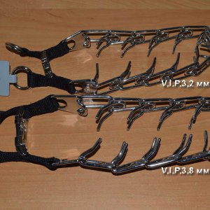 Ошейник строгий V.I.P. с застежкой металлическим фастексом