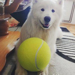 Очень большой мяч